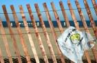 baixada santista elimina sacolas plásticas em 2012