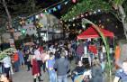 Festa junina da Ilha das Palmas 2013