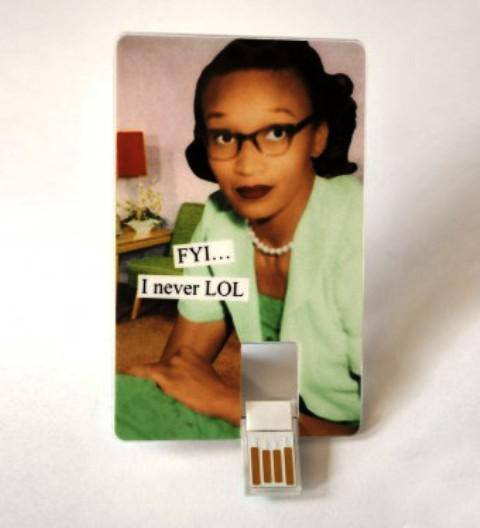 pen drive anne taintor