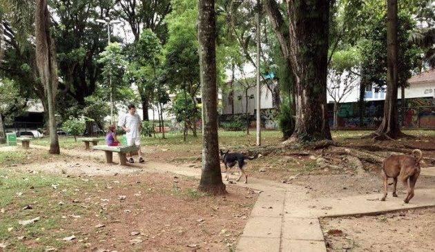 Parque para cães em Santos