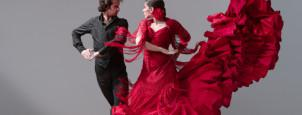 Instituto Andaluz Casal Flamenco