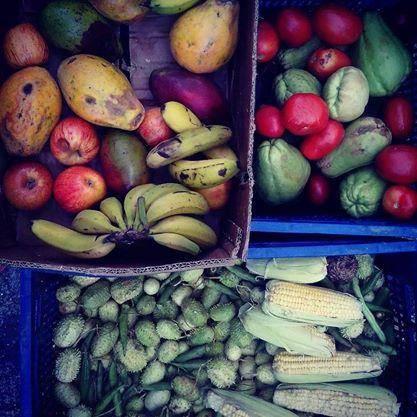 www.juicysantos.com.br - combate ao desperdício de alimentos
