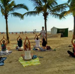www.juicysantos.com.br - caminhada ecológica com yoga arte de viver