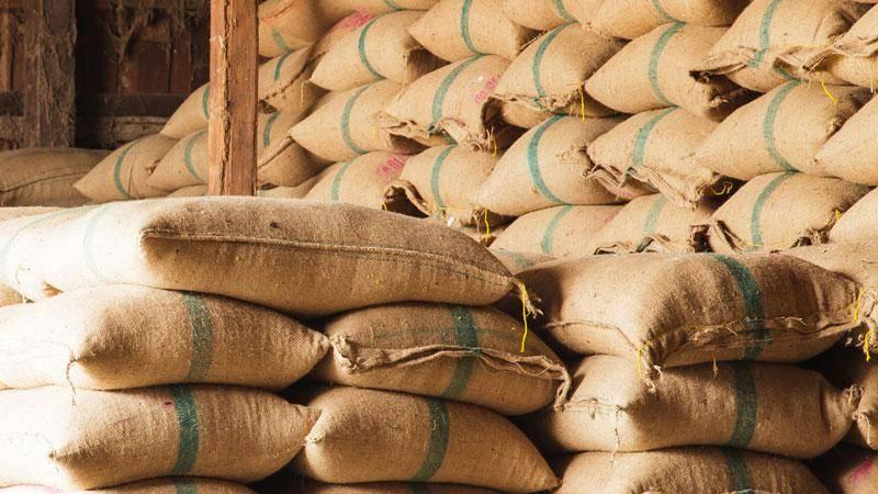 Castanhal vê volume de exportação de café em sacos estável em 2017