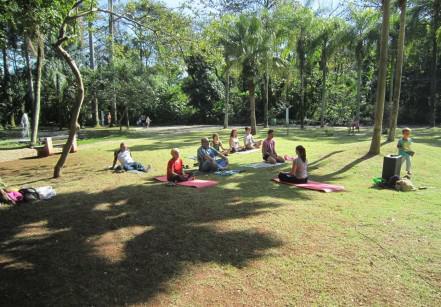 feira-organicos-yoga