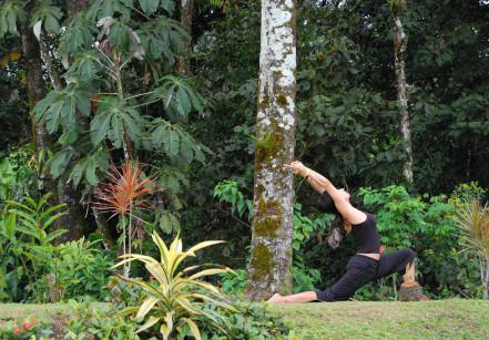yoga sp