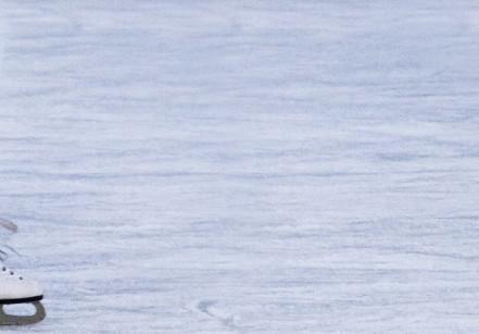 www.juicysantos.com.br - patins no gelo