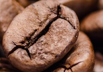 close-up-of-coffee-beans