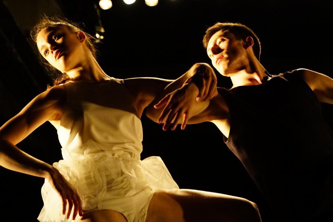 gaga o amor pela dança
