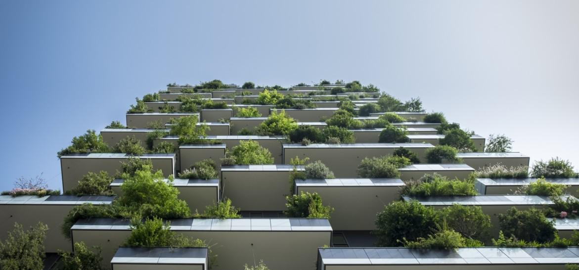 www.juicysantos.com.br - faculdade de arquitetura e urbanismo em santos sp