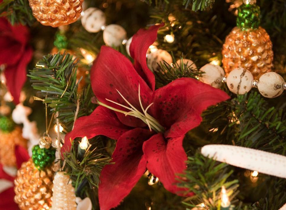 BP-HCHH1_Coastal-Christmas-Starfish-Pineapple-Pointsetta_v.jpg.rend_.hgtvcom.966.1288