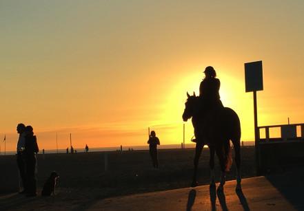Imagem de um cavalo sendo montado ao por do sol na praia de Deauville, França