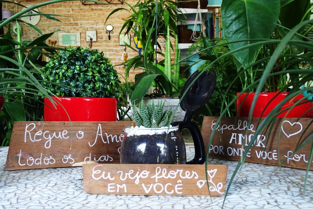 jardinagem e paisagismo em Santos (4)