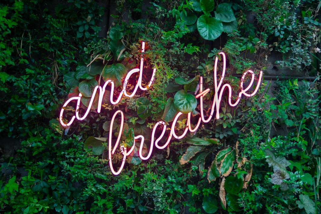 www.juicysantos.com.br - breathe neon