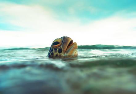 Tartarugas do Emissário Submarino de Santos