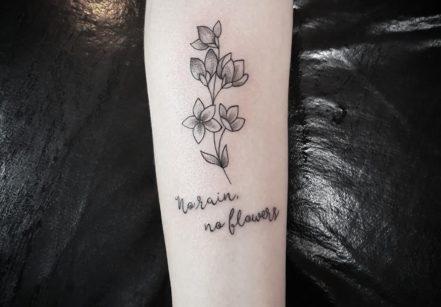 www.juicysantos.com.br - tatuadoras em santos