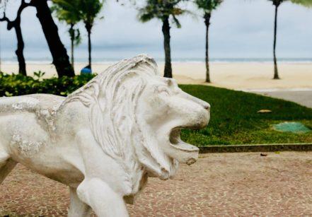 www.juicysantos.com.br - leão da praia de santos