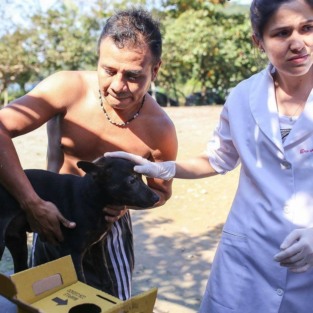 www.juicysantos.com.br - animais das aldeias da baixada santista