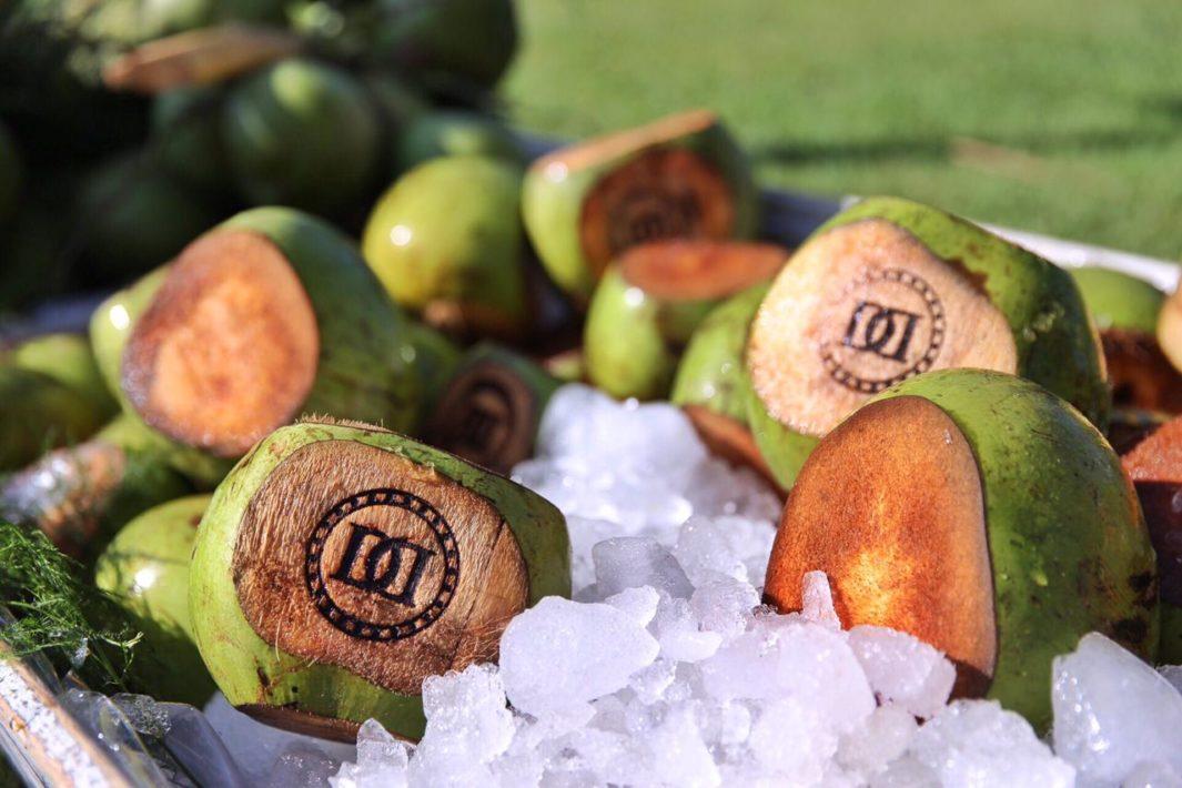 www.juicysantos.com.br - Água de coco em cardápio de casamento