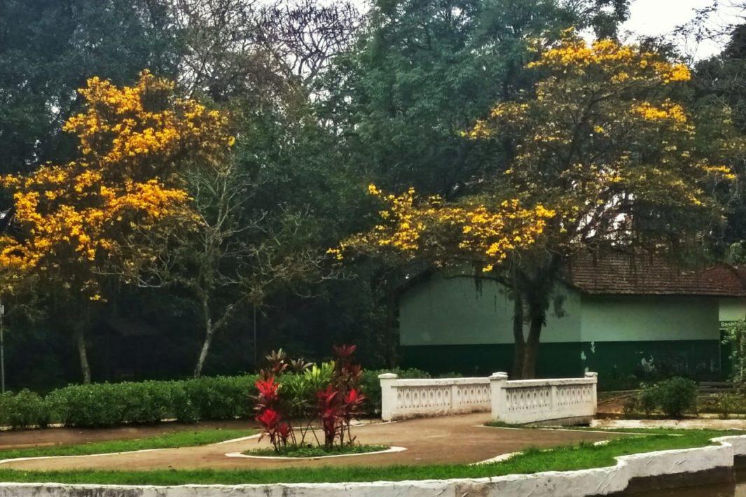 juicysantos.com.br - Passeios com as crianças em Santos