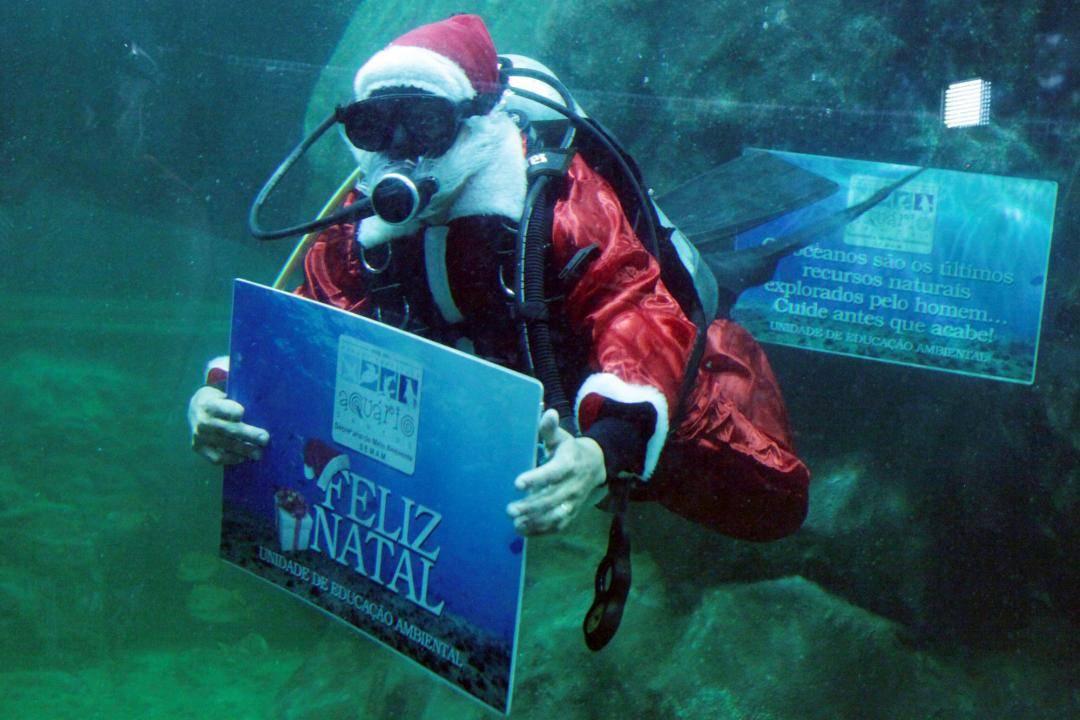 809c8c597c103 Veja o Papai Noel mergulhando no Aquário de Santos - Juicy Santos