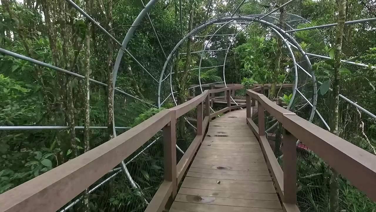 www.juicysantos.com.br - vista do túnel do parque imigrantes em são paulo