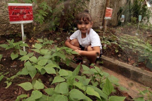 juicysantos.com.br - horta em uma escola de Santos