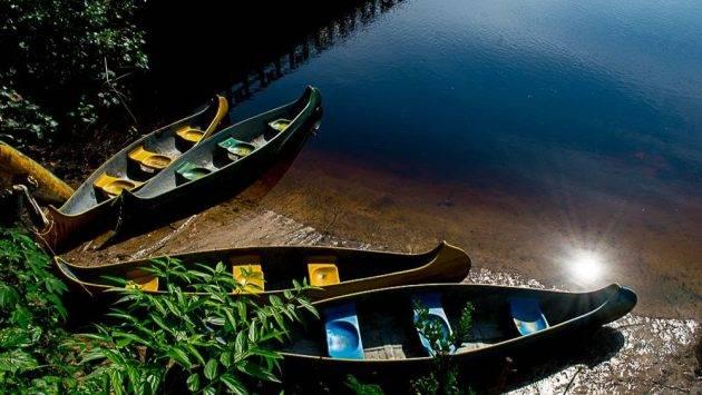 juicysantos.com.br - Aulas de fotografia gratuitas em Bertioga