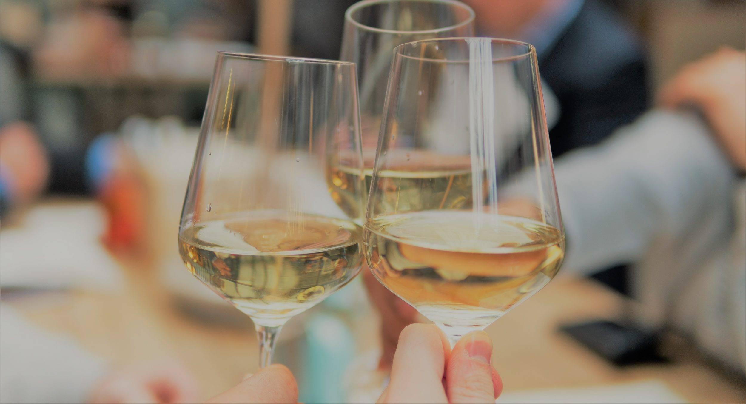 www.juicysantos.com.br - acausa wine em santos sp
