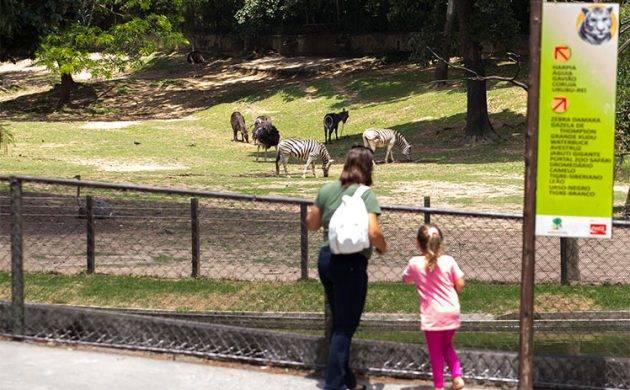 juicysantos.com.br - zoológico de São Paulo