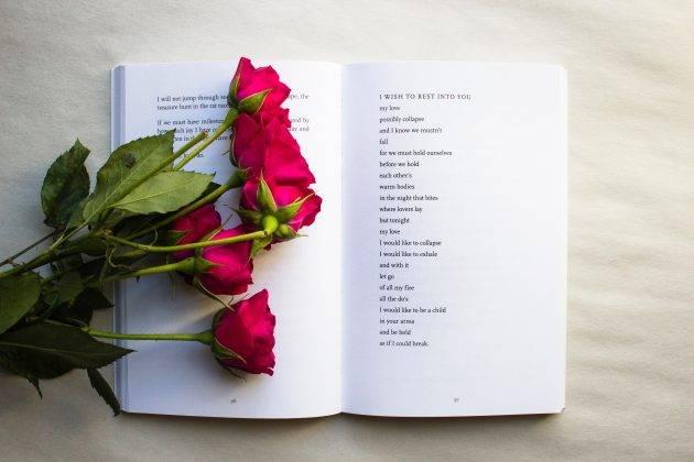 juicysantos.com.br - 2º Ciclo de Poesia Falada de Santos