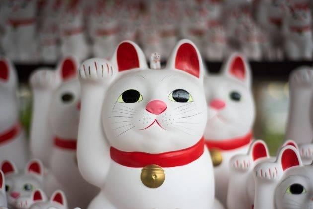 juicysantos.com.br - intercâmbio no Japão para santistas