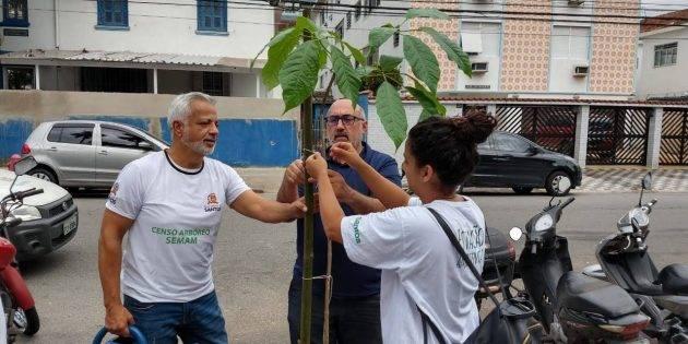 juicysantos.com.br - Santos ganhou mais de 600 árvores novas