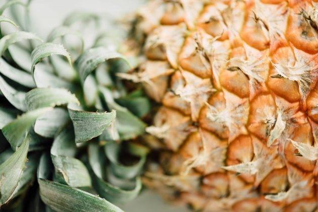 juicysantos.com.br - alimentos que aumentam a imunidade na quarentena