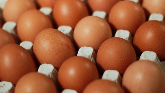 juicysantos.com.br - Ovos do Bem