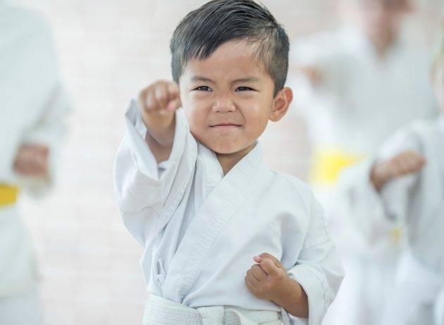 www.juicysantos.com.br - campeonato online de karate em santos