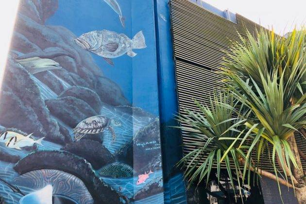 juicysantos.com.br - programação online comemora aniversário do aquário