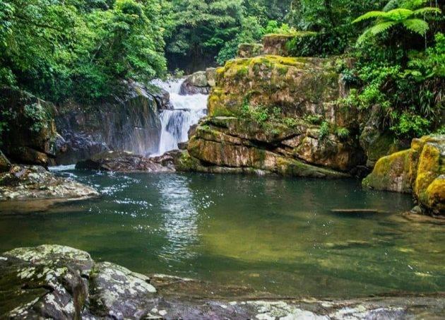 www.juicysantos.com.br - cachoeira do perequê em cubatão
