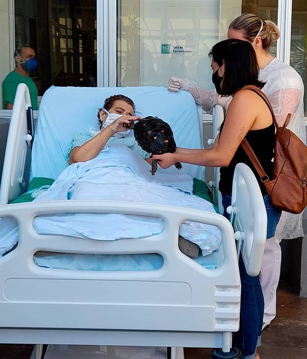 juicysantos.com.br - visita de seu jabuti na UTI de hospital